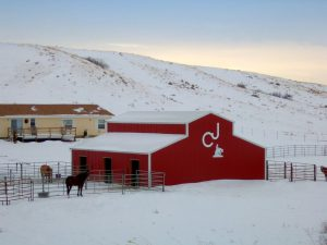 A red-sided, monitor roofed barn with the ranch's brand put on the far end.