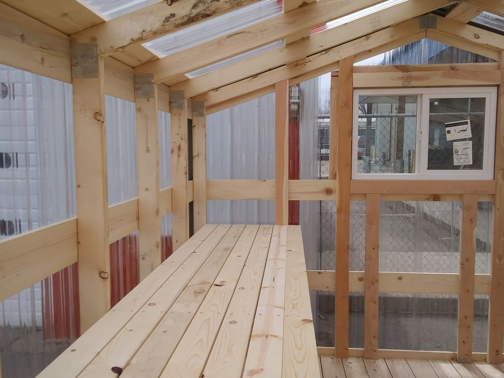 View of wooden shelving that runs the length of the greenhouse interior.