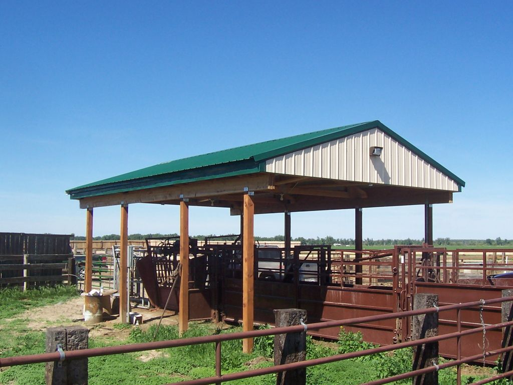 Green roofed, open-sided pole barn that is covering a livestock chute.