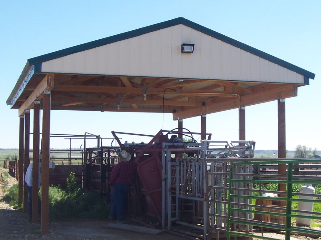 An open-sided pole barn covers cattle chute equipment.